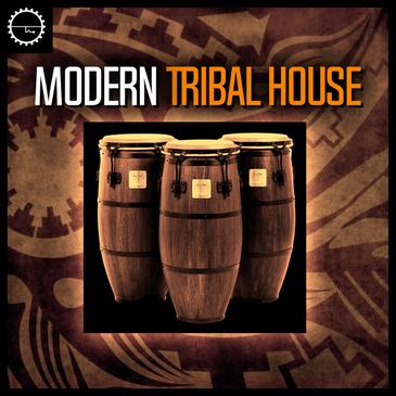 Modern Tribal House