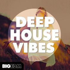 MIDI Chords Riffs Deep House Progressions Wav Piano /& Bass Samples Download