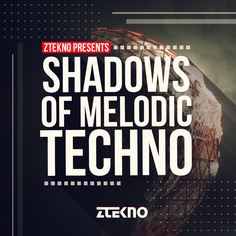 Shadows Of Melodic Techno