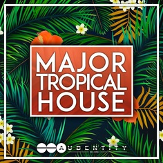 Major Tropical House