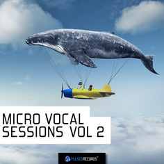 Micro Vocal Sessions Vol 2