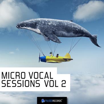 Micro Vocal Sessions Vol 2