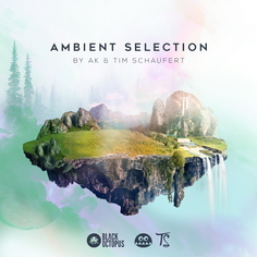 Ambient Selection