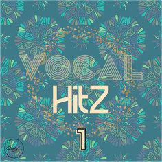 Vocal Hits Vol 1