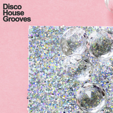Disco House Grooves