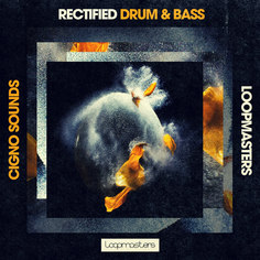 Cigno Sound: Rectified Drum & Bass