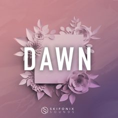 Dawn: Future House