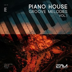 Piano House Groove Melodies Vol 1