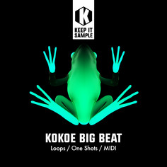 Kokoe Big Beat