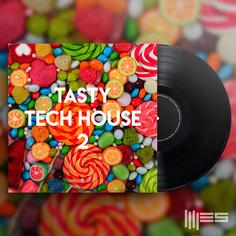 Tasty Tech House 2
