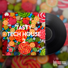 Tasty Tech House 2