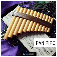 World Series: Pan Pipe