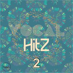 Vocal Hits Vol 2