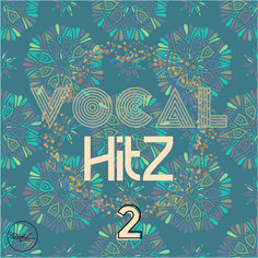 Vocal Hits Vol 2