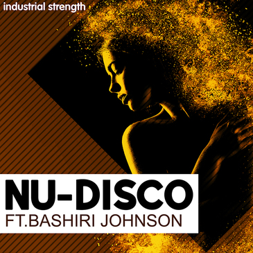 Bashiri Johnson: Nu Disco