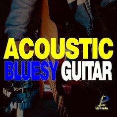 Acoustic Bluesy Guitar