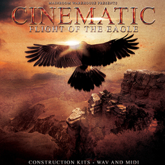 Cinematic Flight Of The Eagle