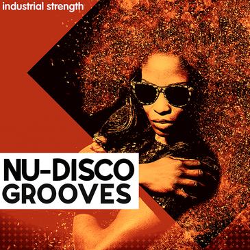Nu Disco Grooves