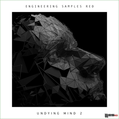 Undying Mind 2