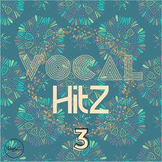 Vocal Hits Vol 3