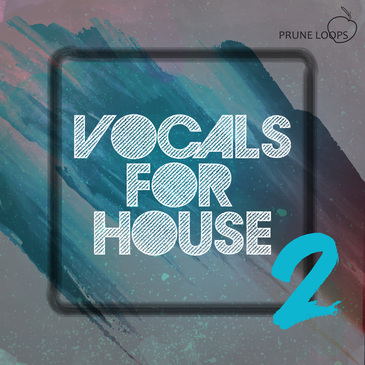 Vocals For House Vol 2