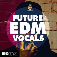Big EDM: Future EDM Vocals