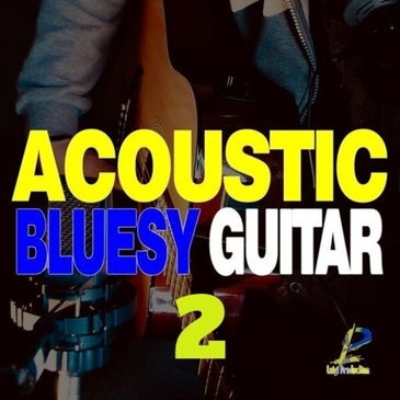 Acoustic Bluesy Guitar 2