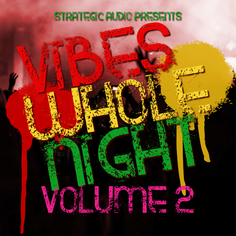 Vibes Whole Night Vol 2