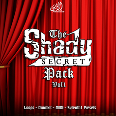 The Shady Secret Vol 1