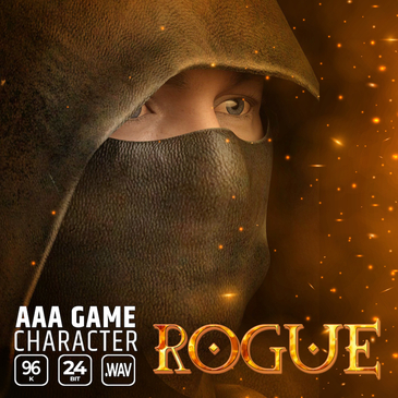 AAA Game Character Rogue