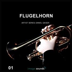 Flugelhorn Vol 1