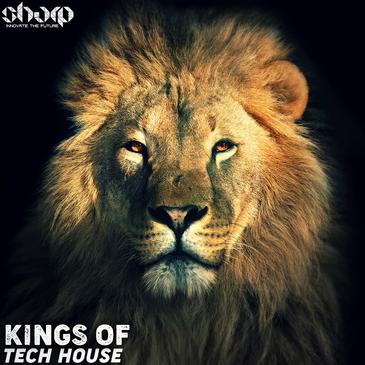 Kings of Tech House