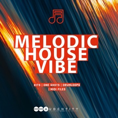 Melodic House Vibe