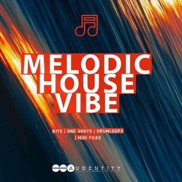 Melodic House Vibe