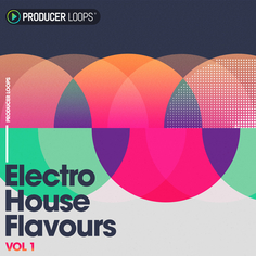 Electro House Flavours Vol 1