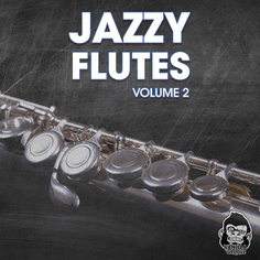 Jazzy Flutes Vol 2