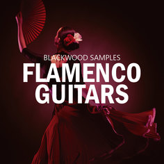 Blackwood Samples: Flamenco Guitars
