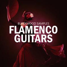 Blackwood Samples: Flamenco Guitars
