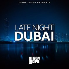 Late Night Dubai