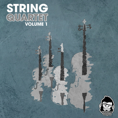 String Quartet Vol 1
