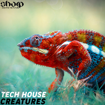 Tech House Creatures