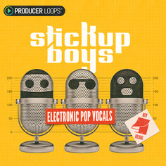 Stick Up Boys: Electronic Pop Vocals Vol 4