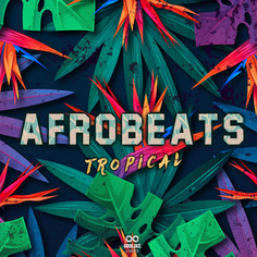 AfroBeats Tropical