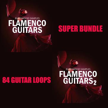 Flamenco Guitars Bundle
