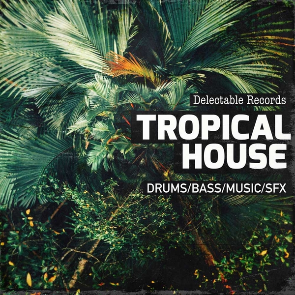 Delectable Records: Tropical House