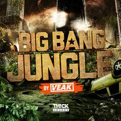 Big Bang Jungle by Veak
