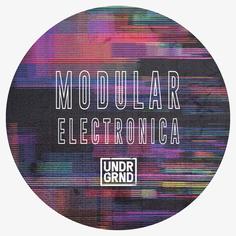 Modular Electronica