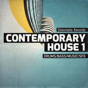 Contemporary House 01