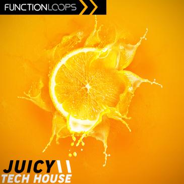 Juicy Tech House