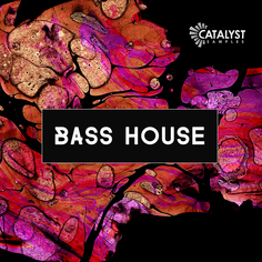 Catalyst Samples: Bass House